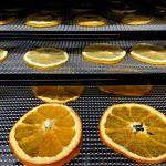 déshydrateur de fruits